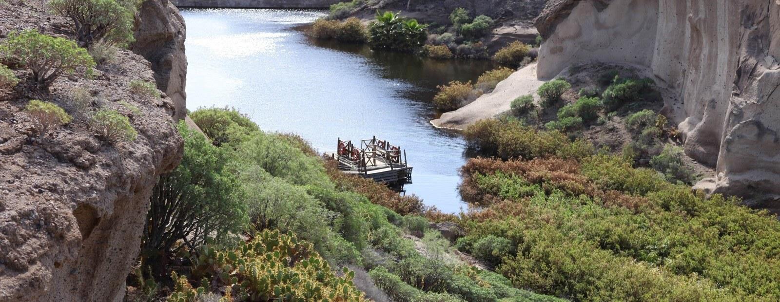 Environmental Reserve
